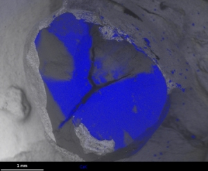 Fig 4 Ca (blue) superimposed on fractured stone