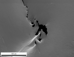 figure 3 - SE image of STEM sample