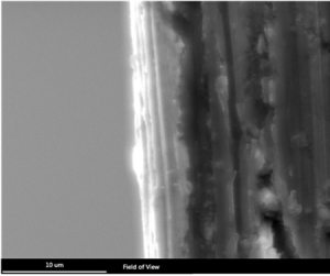 Figure 2: SEM image of the cross section of the edge of the eyelet. Th Sn and Ni layers can be seen from left to right